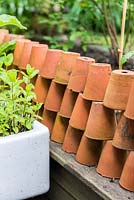 A small vegetable and herb plot with dividing wall made from terracotta pots.