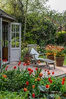 A small wooden summerhouse and patio with hot mixed borders including Tulipa Brown Sugar, General de Wet and Orange Cassini. The large terracotta containers are planted with Tulipa Abu Hassan and Carex comans Bronze.
