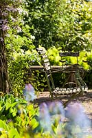 View through Corydalis elata 'Spinners' to garden chairs and pillar with Clematis montana 'Freda'. Herrenm�hle Bleichheim