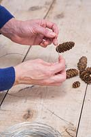 Wrap the wire around the bottom of the Pine cones