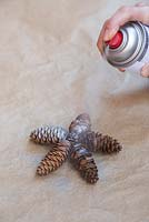 Pine Cone Stars. Spray both sides of the Pine cone stars in a well ventilated area