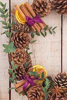 Detail of scented wreath featuring dried Citrus fruit, Cinnamon sticks, Star anise, Pine cones and sprigs of Eucalyptus