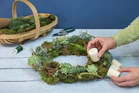 Succulent Wreath. Place the candles inside the Peat free fibre pots