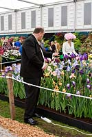 Man using a hairdryer on Iris flowers, RHS Chelsea Flower Show 2006