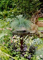 Detail of planter filled with grass beside bench, Chelsea flower show 2002. A garden for all seasons. Design D. Rosewarne