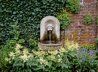 Cherub wall fountain surrounded by astilbe deutchland, corydalis and hedera, The Orangerie, Kent. Owner: Rex Strickland, June