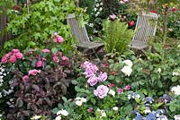 Seating area framed with roses and dense planting in 'Rosy Hues' at RHS Tatton Flower Show 2015