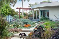 View across concrete path and mixed beds to modern house and outside eating area. Encinitas, California, USA. August.