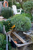 Beach themed garden detail with lobster pot, santolina, californian poppy, hardy geranium, a rowing boat, verbena bonariensis, a white chair, gravel, driftwood, ornaments.