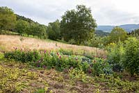 Small acre with vegetables and flowers embedded in natural landscape with meadows and an orchard. Plants include potatoes, Dahlia and Helianthus annus
