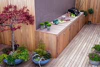 Outside bbq and plants in containers including Acer. April.