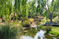 Willow trees and Cortaderia lining the banks of the river that runs through Bhudevi Estate garden, Marlborough, New Zealand.