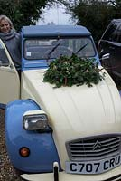 Christmas wreath making workshop. Lady with completed wreath on her vintage Citroen bonnet featuring Hedera - Ivy, red sprayed fir cones, dried apples, Pinus - Christmas tree twigs, red twigs and Cinnamon sticks. December, St Francis Cottage