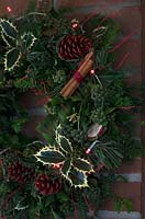 Christmas wreath making workshop. Wreath features Hedera - Ivy, Ilex - variegated Holly, red sprayed fir cones, dried apples, Pinus - Christmas tree twigs, red twigs, Cinnamon sticks and red fairy lights. December, St Francis Cottage
