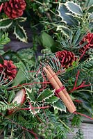 Christmas wreath making workshop. Wreath features Hedera - Ivy, Ilex - variegated Holly, red sprayed fir cones, dried apples, Pinus - Christmas tree twigs and Cinnamon sticks. December, St Francis Cottage