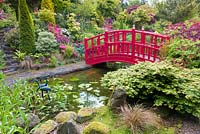 A bridge spans an ornamental pond in the Japanese Garden at Mount Pleasant Gardens, Kelsall, Cheshire in June. Plants include Carex, Rhododendrons, Azaleas and Acer palmatums