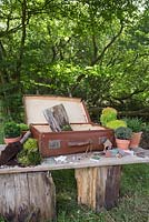 Materials required are a vintage suitcase, Moss, decorative pebbles, seashells, animal and structure figurines, tree bark, small Conifers and LED lighting