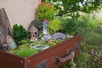 A miniature garden scene in a vintage suitcase made with Moss, decorative pebbles, seashells, animal and structure figurines, tree bark, small Conifers and LED lighting