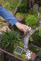 Miniature Wheelbarrow Garden. Young girl adding animal figurines to the miniature garden