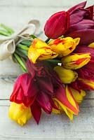Bouquet of Tulipa 'National Velvet, 'Synaeda King', 'Olympic Flame' and 'Lasting Love' on table