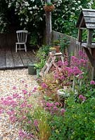 Pots and containers with pink valerian on shingle patio