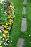 Border by lawn planted with Alyssum, Antirrhinum and Calendula by lawn with stepping stones