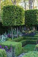 The Support the Husqvarna Garden : A contemporary retreat with sunken lawn, geometric topiary and pleached Carpinus hedging.  Sponsor: Husqvarna. Designer: Charlotte Albone. RHS Chelsea Flower Show 2016