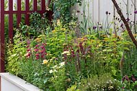 Hot coloured raised border with Penstemon, Achillea, Rosa, Cosmos, Cirsium and Digitalis. Squires 80th Anniversary Garden designed by Catherine Macdonald.