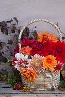 Orange and red toned Dahlia display in woven basket. Featuring Dahlia 'Frost Nip', 'Dahlia Mrs Eileen', Dahlia 'Ariko Zsaza', Dahlia 'Babylon Red' and Dahlia 'Art Deco'