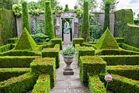 Formal garden with yew topiary and hedging. Frank Thuyls garden.