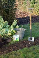 Materials required for planting bare root  prunus laurocerasus - cherry laurel