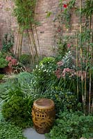 Detail of garden with mixed planting of  Scaevola - native fan flower, Crassula ovata 'Gollum', Sedum 'Autumn Joy' and various grasses. Ground covers Viola hederacea - Australian native violet in the foreground. Bamboo and Mandevilla laxa are trained up a brick wall using chains. An Asia ceramic chair is seen.