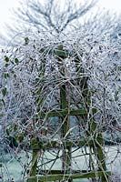 Frost covered obelisk in winter