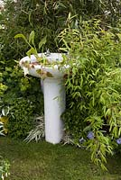 Washbasin planter in the Recycled and reused garden BBC Gardeners World Live 2015