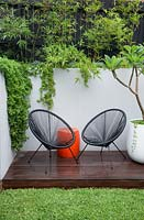 A timber deck with two black Acapulco chairs, an orange plastic drum table a round white plastic pot with a Plumeria, Frangipani in it in front of a grey painted cement rendered retaining wall. With succulents spilling over the wall and a screen of Slender weavers bamboo.