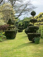 The Laskett Gardens - The long lawn beside the Elizabeth Tudor walk with amazing topiary in many creative shapes including tiered and animal features. A Taxus bacata hedge runs along the side.