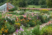 The Walled Garden at Kelmarsh Hall planted with colourful late summer borders including Dahlia, Cosmos and Rudbeckia. The borders are at their peak in September for the Dahlia festival.