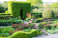 The Front Garden: Wave form hedge of Buxus sempervirens, Large mounds of Osmanthus burkwoodii, Tunnel of Carpinus betulus -
