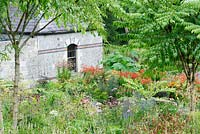 A pair of Aralia echinocaulis frame herbaceous perennials including persicarias, crocosmias, echinaceas, alstroemerias, phlox and dahlias, with former steward's house as backdrop.