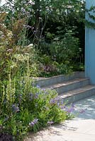 Steps leading past border with Penstemon 'Heavenly Blue' with Verbena bonariensis and Verbascum 'Album' - Viking Cruises World of Discovery Garden, RHS Hampton Court Palace Flower Show 2017