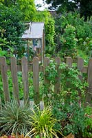 Garden view with wooden greenhouse and wooden picket fence