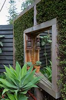 Timber screen interplanted with Muehlenbeckia complexa, wire vine, to make a green screen, with a mirror to give the illusion of space. A large potted Agave attenuata, Century plant.