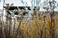 Grasses and seedheads in the Courtyard Garden at Bury Court Gardens, Hampshire. Designed by Christopher Bradley-Hole.