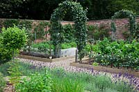 Half standard Bay tree, Mint and Chives in walled herb garden with Lavandula 'Imperial Gem' and Step-over apple - 'Orleans Reinette'   edging beds. Apples trained over steel arches and carrots growing surrounded by mesh against carrot fly.