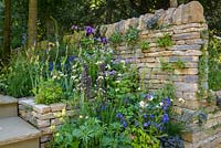 Dry stone walls planted with ferns, violas and ivy-leaved n in The Poetry Lover's Garden - RHS Chelsea Flower Show 2017