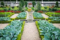 Vegetable knot garden and parterre - Chateau Villandry, Loire Valley, France