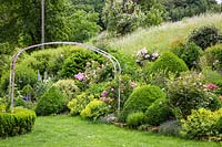 Rose garden with shrub roses, clipped box, perennials and a rose arch  over a lawn. Plants include Alchemilla mollis, Buxus, Delphinium, Lavandula, Paeonia, Rosa 'Mme Ernest Calvat' and Rosa 'Sangerhausen'