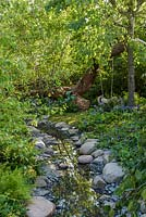 Shallow stream in woodland garden with edging of rocks and pebbles planted with Hostas - The Zoflora and Caudwell Children's Wild Garden. RHS Hampton Court Flower Show, 2017. Designers: Adam White and Andree Davies