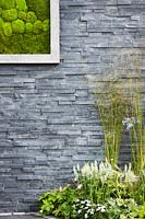 Modern black slate stone wall with living picture made with moss and summer border with white sages Salvia sylvestris 'Schneehugel' and Molinia grass. Contemporary Bee and Butterfly Garden -BBC Gardeners World Live Flower Show 2017