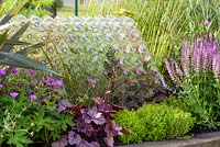 Recycled plastic bottles with Phormium, Geranium, Heuchera, Thymus, Sedum and Salvia. Forward and Back, Beautiful Borders in BBC Gardener's World Live, Birmingham 2017. Designer: Justine Wood, Sponsor: Friels Vintage Cider, Event Flag Hire, Sherwoods